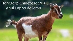 Horoscop Chinezesc 2015 - Anul caprei de lemn