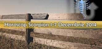 Horoscop Saptamanal Scorpion 1-7 Decembrie 2014