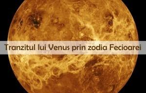 Tranzitul lui Venus prin Fecioara
