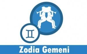 Zodia Gemeni