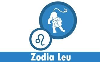 Horoscop Leu Noiembrie 2014