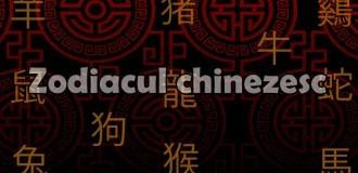 Zodiile chinezesti – perioade si caracterizare